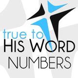 Book of Numbers - with Pastor