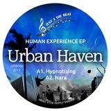 Urban Haven
