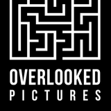 Overlooked Pictures