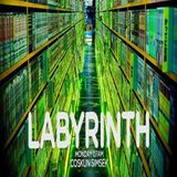 Guestmix for LABYRINTH by Coskun Simsek on FRISKY with Clay van Dijk
