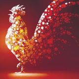 Year Of The Rooster - DJ Dane @ The Opium Den, San Francisco