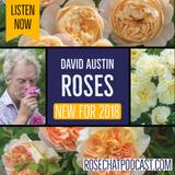 David Austin Roses | New Intros for 2018