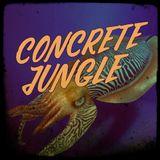 Concrete Jungle - 2017-12-28 Dj Stalefish - New Danny T & Tradesman, Peter King, Leaf, Somah, JSM