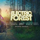 Bassnectar Electric Forest