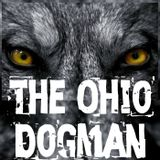 """""""The Ohio Dogman"""" and 7 more TRUE PARANORMAL  stories! #WeirdDarkness"""