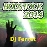 DJ Ferret - Bodstock 2014