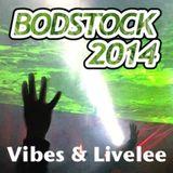 Vibes & Live Lee - Bodstock 2014