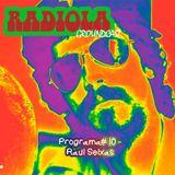 Radiola#10 – Raul Seixas