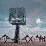 Anthony Mansfield - Robot Heart - Burning Man 2016