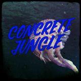 Concrete Jungle - 2017 - 12 - 21 - Dj Stalefish - New Dead Man's Chest, Inja, Lynx, Digital
