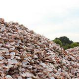 War on waste waging in Geelong