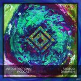 Introspections Podcast Presents Farbod Darwish [#017]