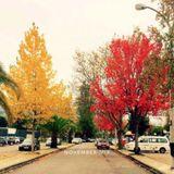 November_mix