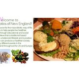 The Macrobiotic Approach to Health and Wellness