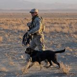 Episode 128: Canine Soldiers, the Documentary