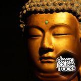 Davide Nardini (DeepHouseTrakcs) podcast #043 [March 2017]