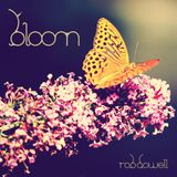 Rob Dowell-Bloom