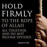 Firoz P Muhammed