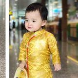 Linh Hoang Viet