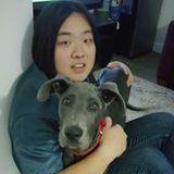 Josh Seo