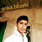 Ankit Repswal Bhorki
