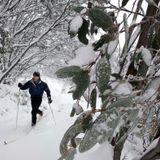 Monday night travel: Australian ski destinations