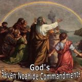 Lesson 1 The Order of the Seven Commandments