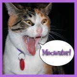 Episode 110 - Anton & Cecil: Cats Aloft