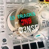 13 Tracks of DNB