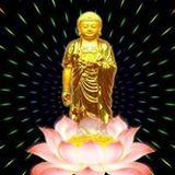 Đệ Tử Thích Phật