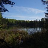 Long Lake, Talkeetna, AK - mid-night chorus