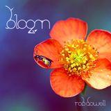 Rob Dowell-Bloom 2