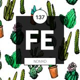 FE Radio 137 + NOMAD