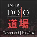 DNB Dojo Podcast #15 - Jan 2018
