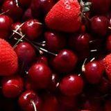 Strawberries & Cherries 2017