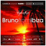 Camelia Lounge Radio with Henry Hacking & Bruno from Ibiza