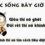 Chim Qoa Qoa