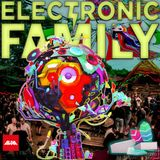 Prgrm D @ Electronic Family  [The Gathering 2017]  Festival