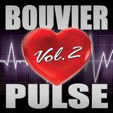 "BOUVIER ""PULSE VOL 2"""