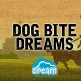 Dog Bite Dreams   Dream Meanings Podcast