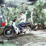Pham Anh