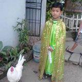 RobinJoyce Solinap