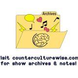 CounterCultureWISE asks for beer & interviews Kevin Kostiner!