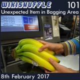101 - Unexpected Item in Bagging Area
