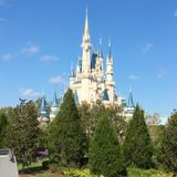Ep. 36 Tips for First Timers trip to Magic Kingdom