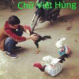 Chữ Việt Hùng