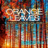 PHOTO MIX - Orange Leaves