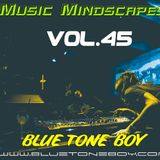 Blue Tone Boy * Music Mindscapes VOL 45 * House - Tech House