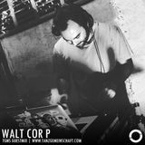 Tanzgemeinschaft guest: Walt Cor P dropping a hot deep tech house mix