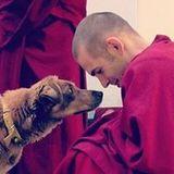 Thubten Tenzin